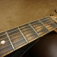 The Columbia Guitar American Make